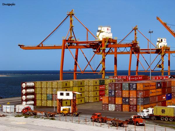 Suíno: demanda chinesa elevada faz com que exportações brasileiras atinjam recorde